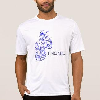 Stanley a camisa do gnomo t-shirts