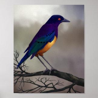 Starling - poster 8x10 da arte dos animais selvage