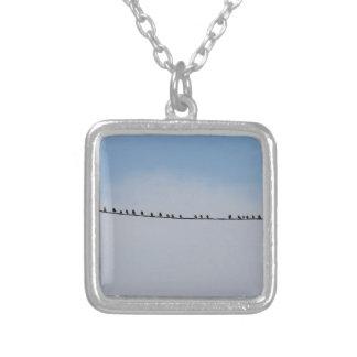 Starlings em um fio colar banhado a prata