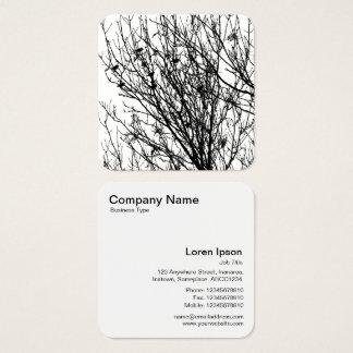 Starlings em uma árvore - preto no branco cartão de visitas quadrado
