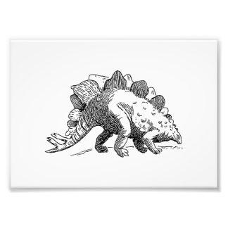 Stegosaurus Impressão Fotográfica