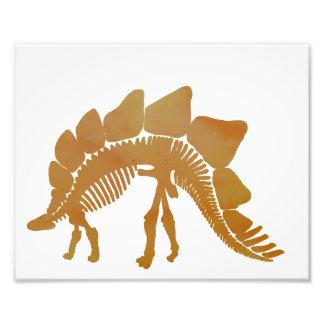 Stegosaurus Impressão De Foto