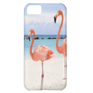 Stroll do flamingo capa para iPhone 5C