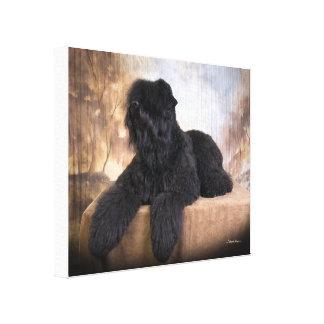 Sua foto favorita em umas canvas! impressão de canvas esticada