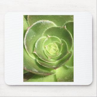 Succulent verde mousepad