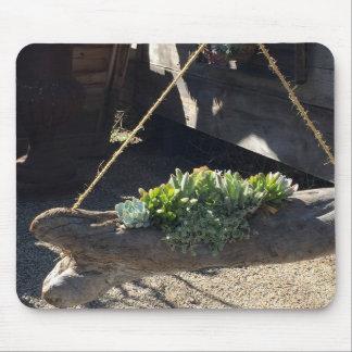 Succulents de Mousepad dos amantes de natureza no