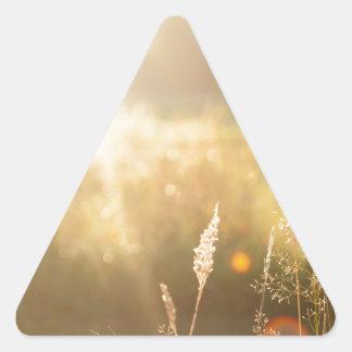 Summerfield Adesivo Em Forma De Triângulo