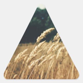 Summerfield Adesivos Em Forma De Triângulo