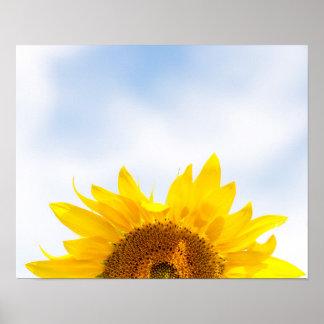 Sun acima do poster do girassol