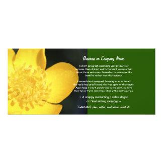 Sun embebeu o botão de ouro dourado 10.16 x 22.86cm panfleto
