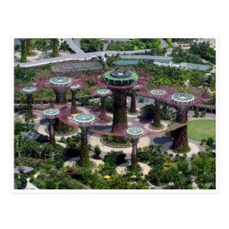 supertrees de singapore cartão postal