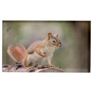 Suporte Para Cartão De Mesa Esquilo vermelho