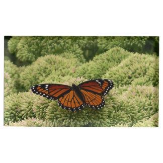 Suporte Para Cartão De Mesa Fotografia bonita da natureza da borboleta do