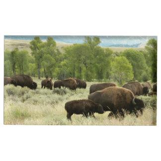 Suporte Para Cartao De Mesa Fotografia do animal da natureza do bisonte de