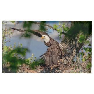 Suporte Para Cartoes De Mesa Águia americana que sae do ninho