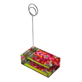 Suporte Para Cartoes De Mesas Casamento personalizado do fruto do eixo flores