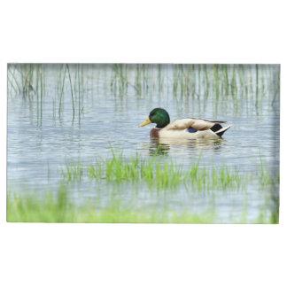 Suporte Para Cartoes De Mesas Pato masculino do pato selvagem que flutua na água