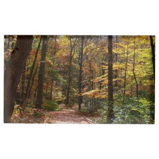 Suportes Para Cartões De Mesa Fuga Sunlit da queda no parque estadual do monte