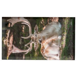 Suportes Para Cartoes De Mesa levarmapa de mesa fotografa cervo