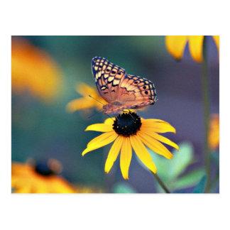 susan de olhos pretos com borboleta 2 cartão postal