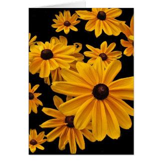 Susan de olhos pretos floral floresce o cartão
