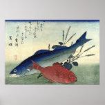 Suzuki & Kimmedai: Impressão japonês dos peixes de