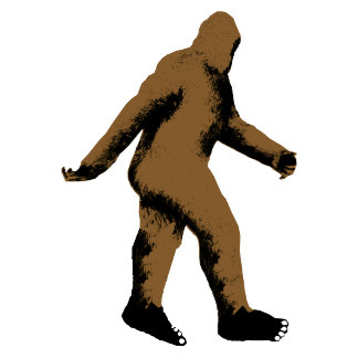 BigFoot Believe