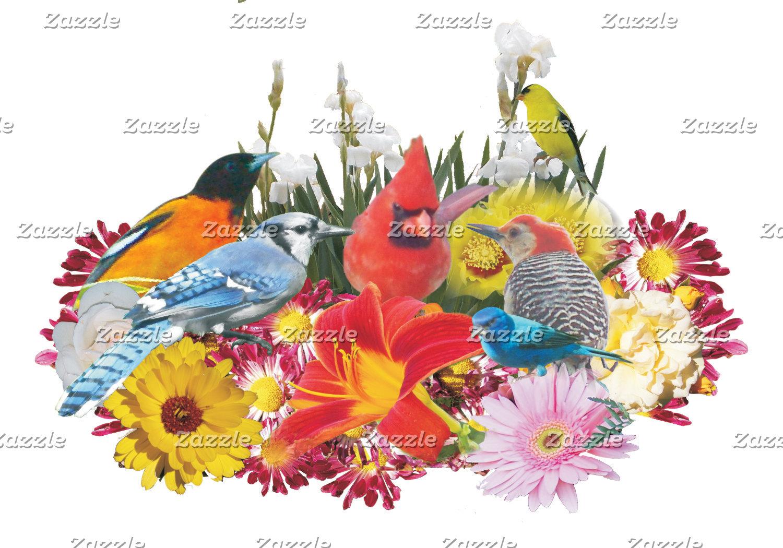 birds and butterflies