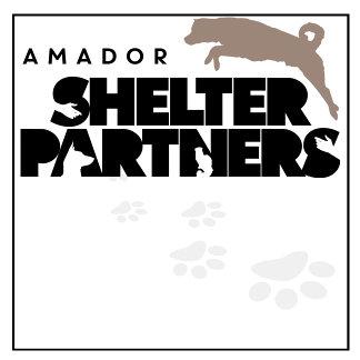 Shelter Partners
