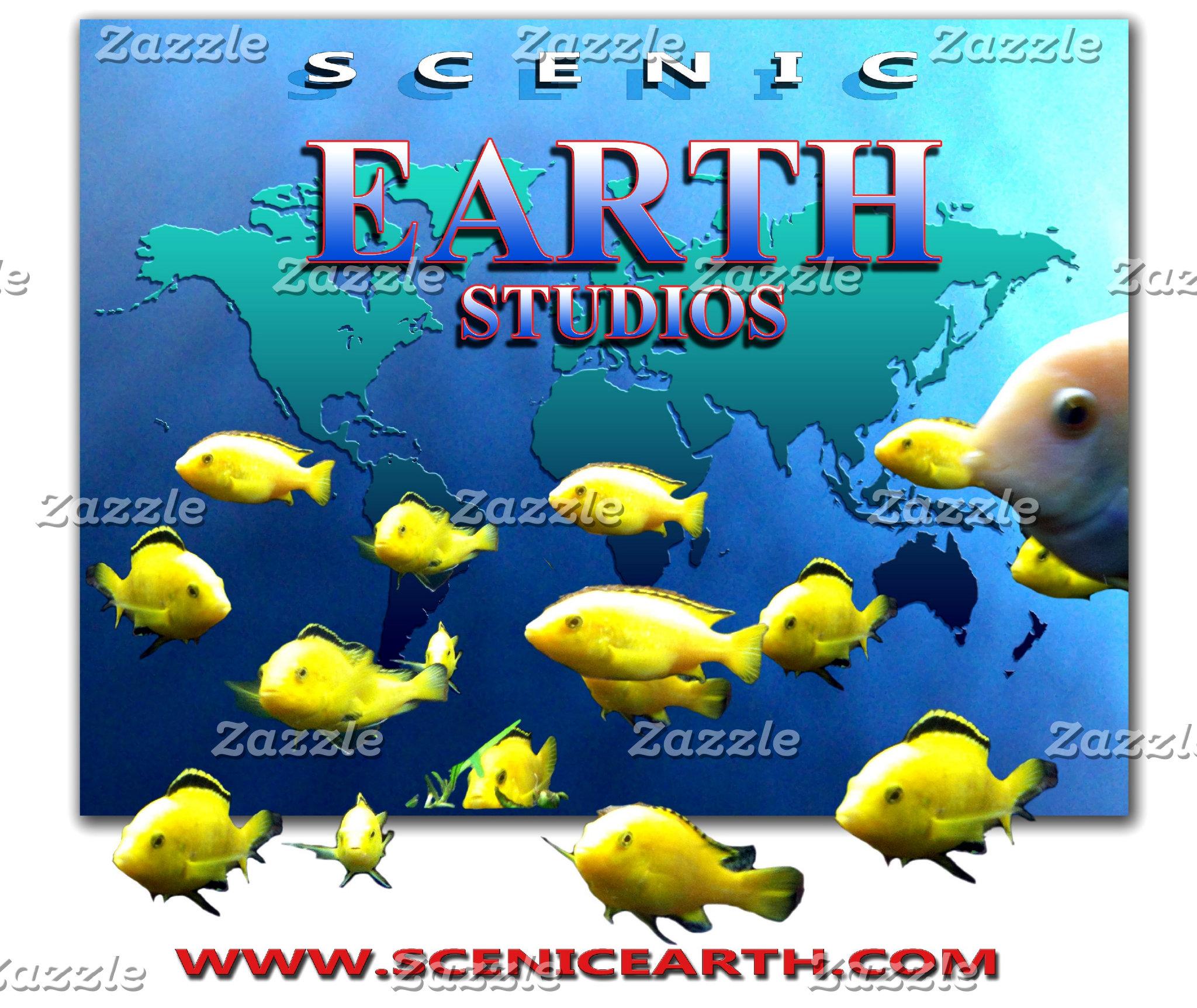 Scenic Earth Studios