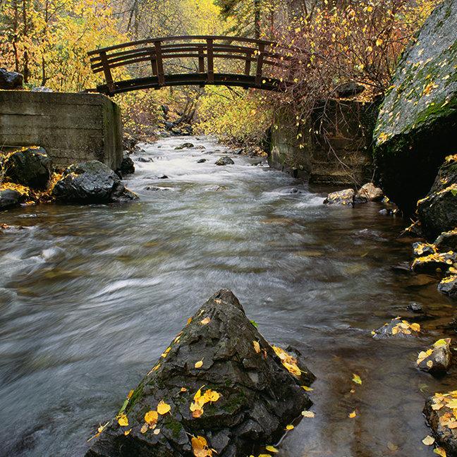 A River Running Through American Fork Canyon