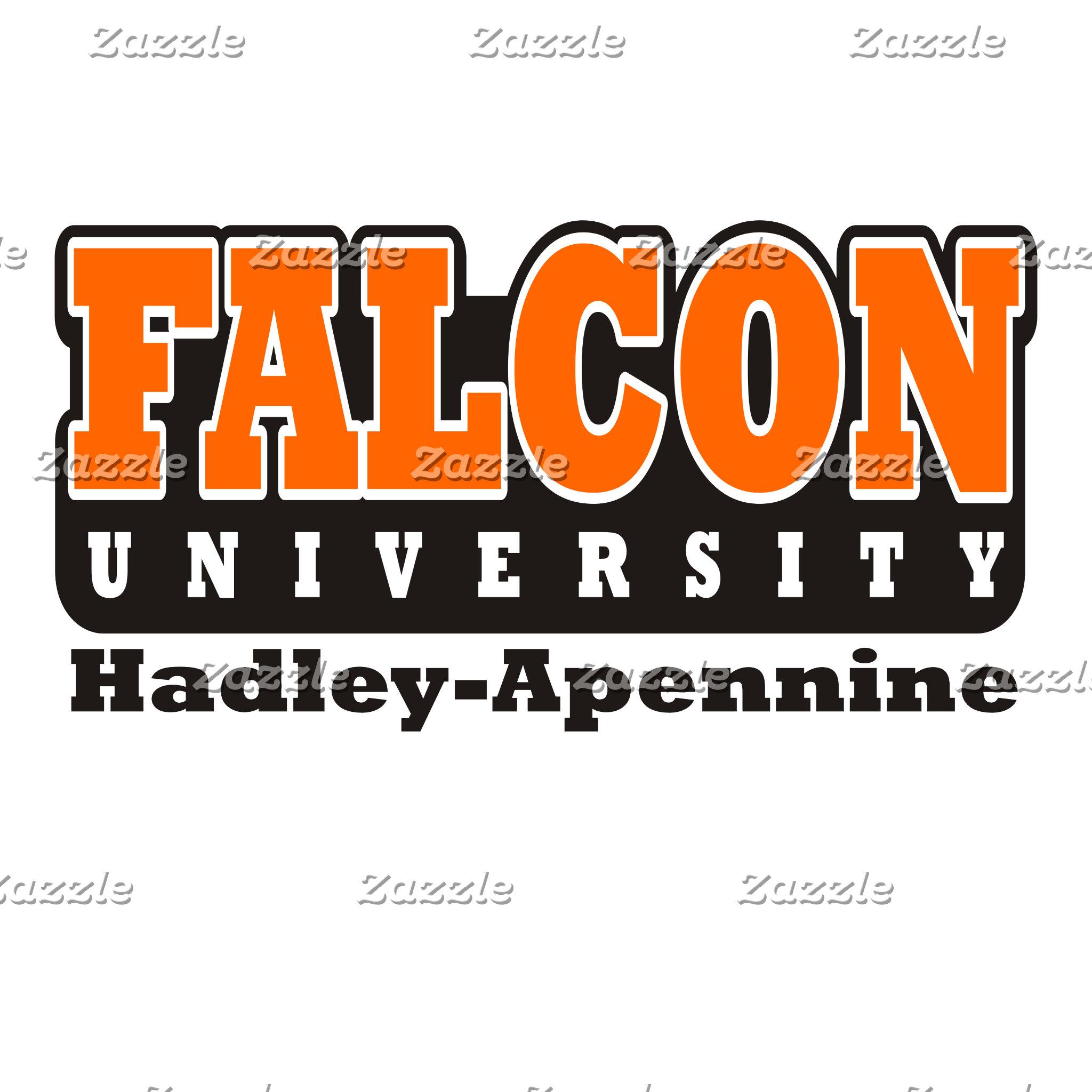 Falcon University