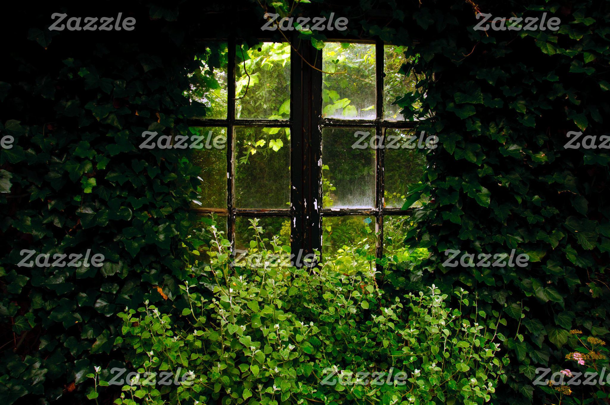 Window green secret garden