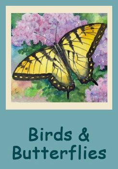 Butterflies & Birds