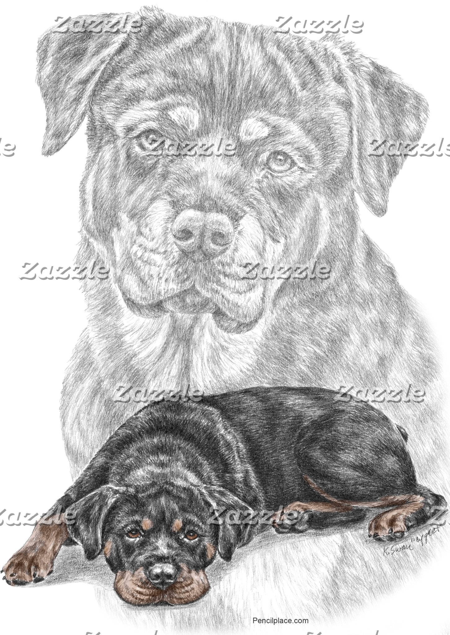 Rottweiler Dog Artwork