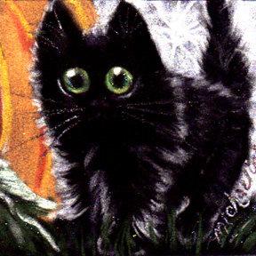 Halloween Black Cats Scaredy Cats