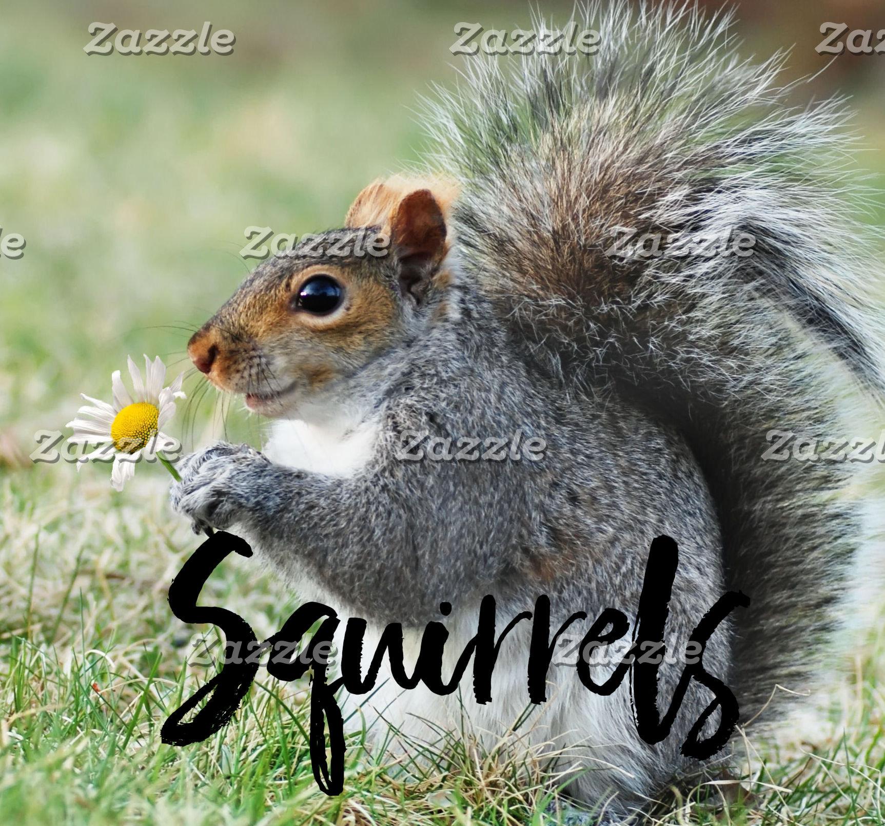 Crazy Squirrels