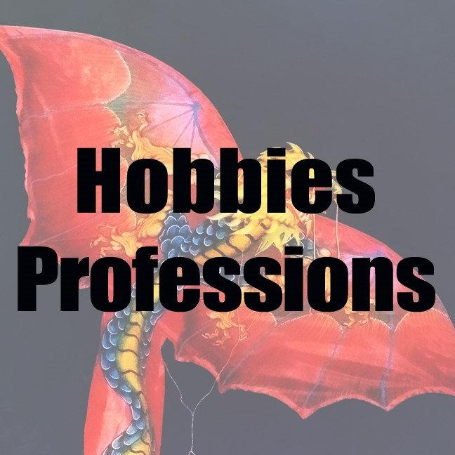 2.  HOBBIES & PROFESSIONS