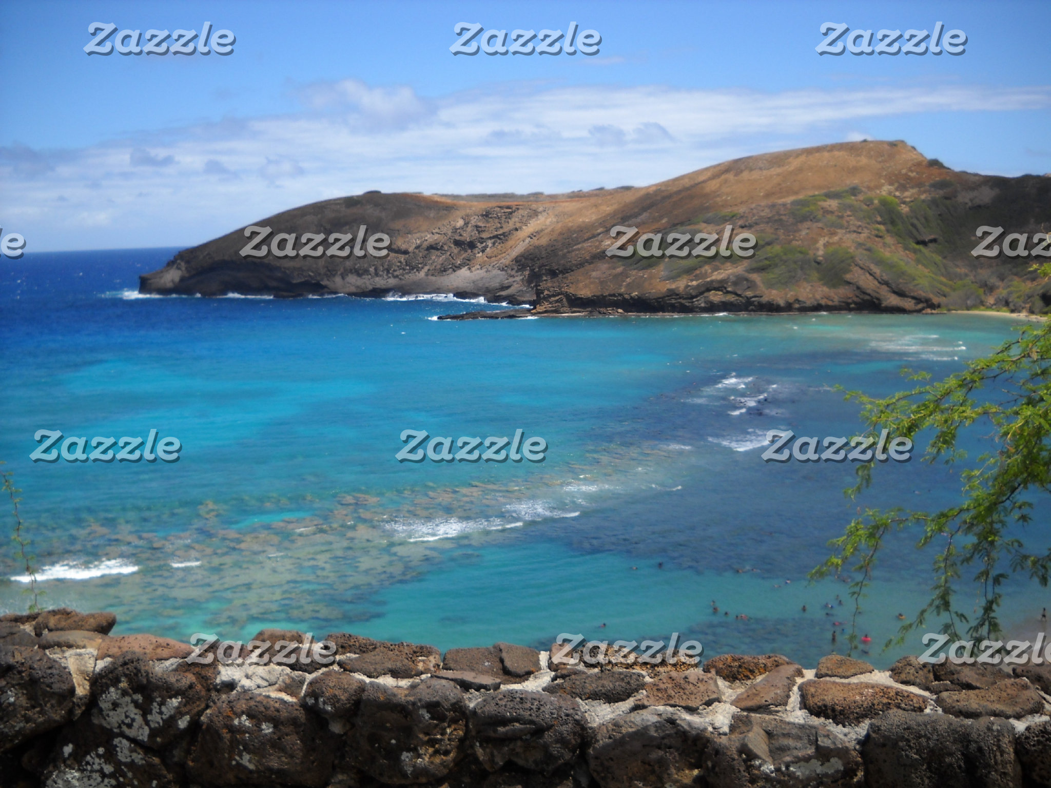 Hanauma Bay Cliff