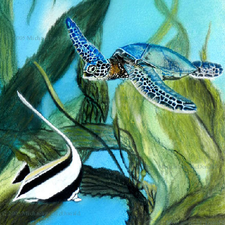 Sea Turtle Art and Gifts