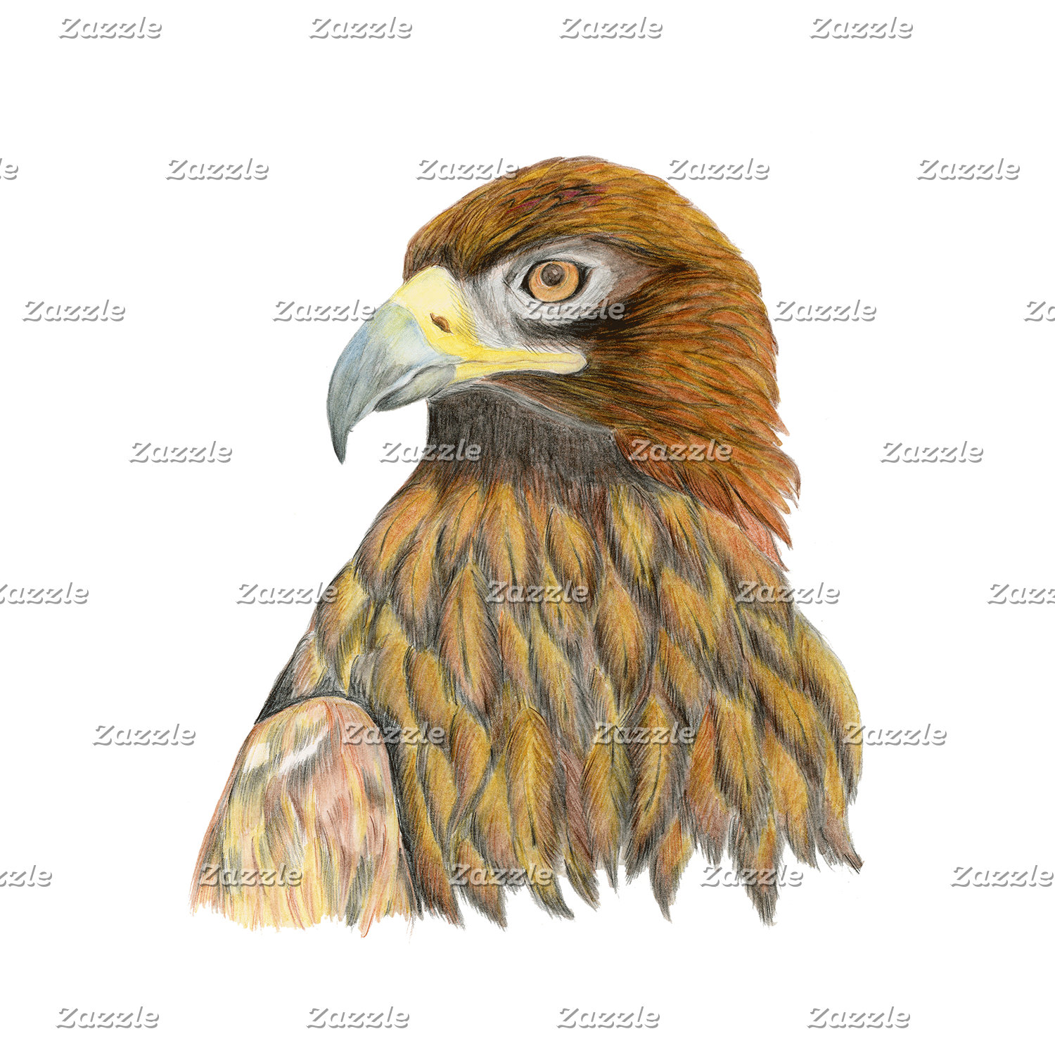 Golden Eagle Artwork