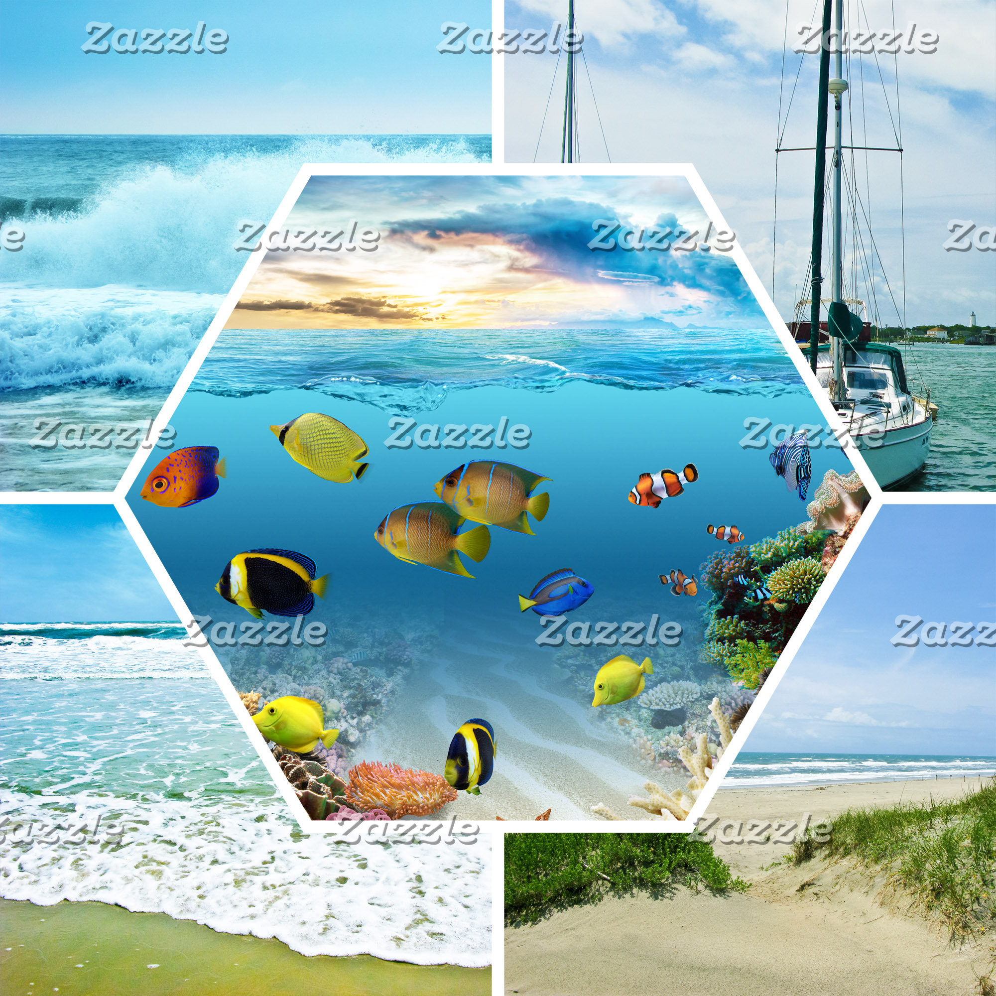 Oceans/Beaches/Waterfronts
