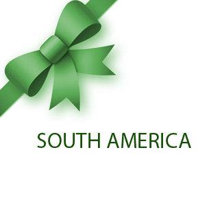 * South America