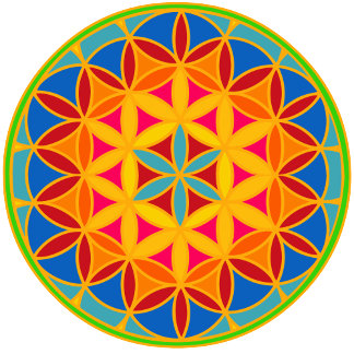 Flower / Seed of Life