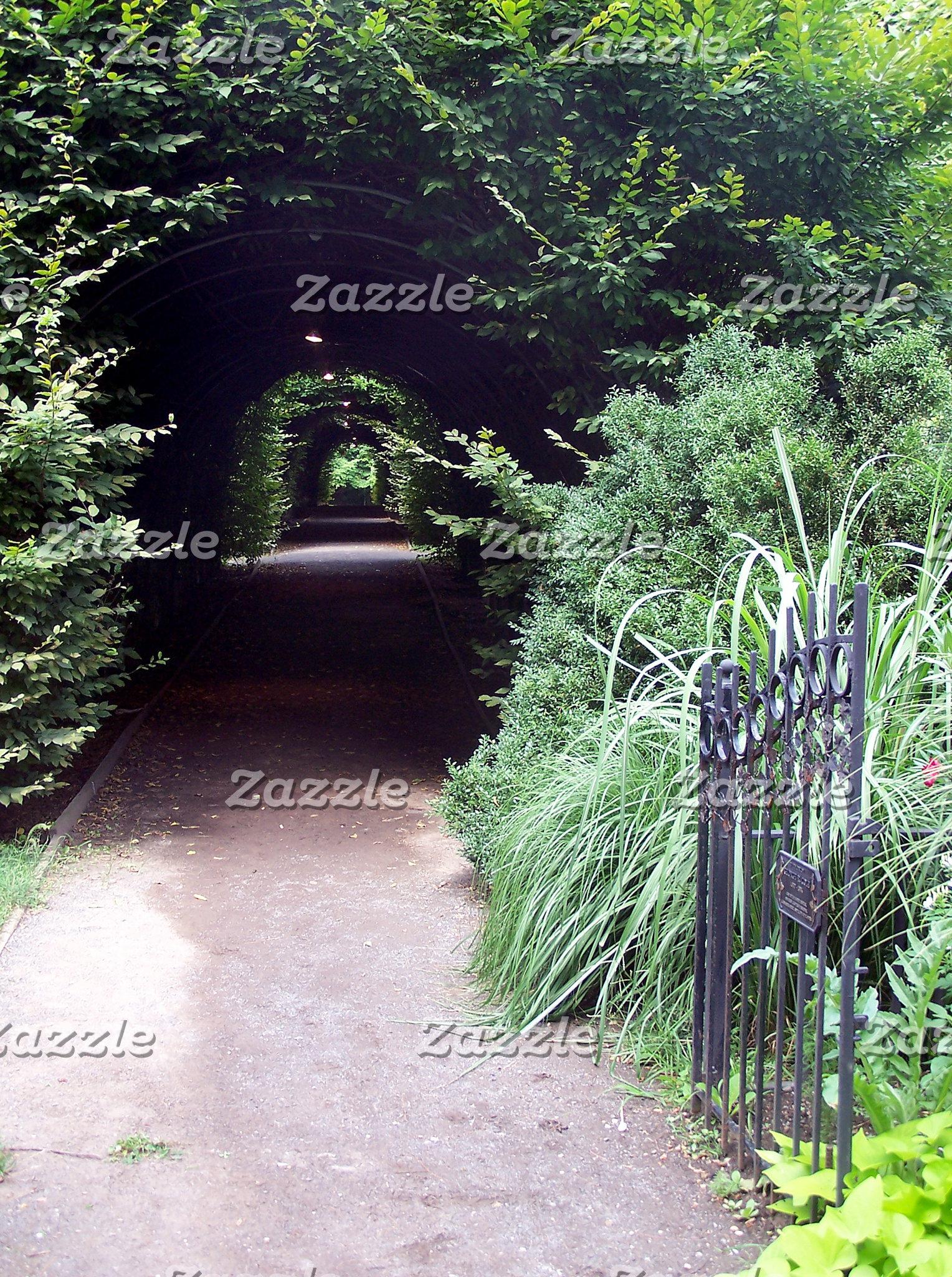 Garden Landscapes