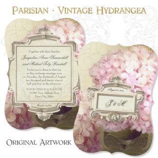 Parisian Hydrangea