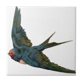 Swallow Azulejos De Cerâmica