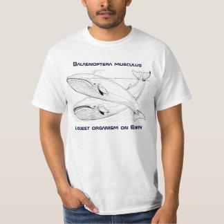 T da baleia azul camiseta