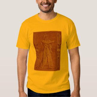 T do faraó - roxo camiseta
