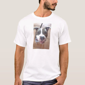 T do pitbull camiseta